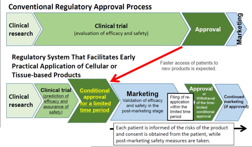 Regulatory_Approval_Process.png