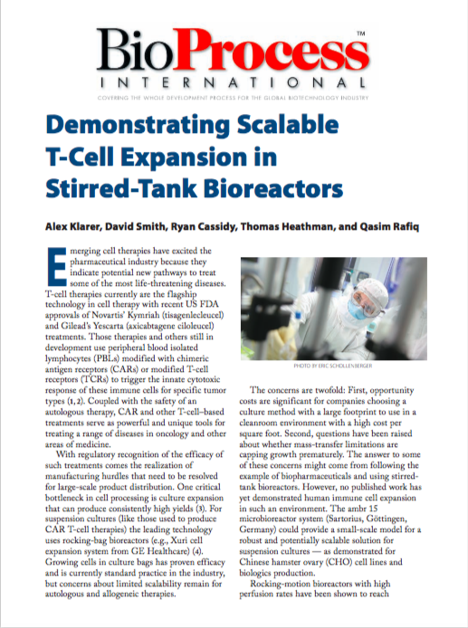 Demonstrating Scalable T-Cell Expansion in Stirred-Tank Bioreactors